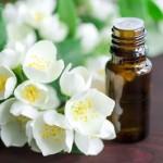 Tinh dầu hoa nhài nguyên chất