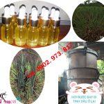 Mua tinh dầu sả nguyên chất ở đâu tại Quảng Nam?